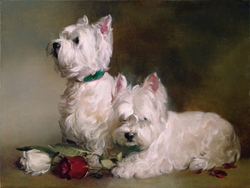 Westies and Roses framed, signed and numbered Studio giclee print