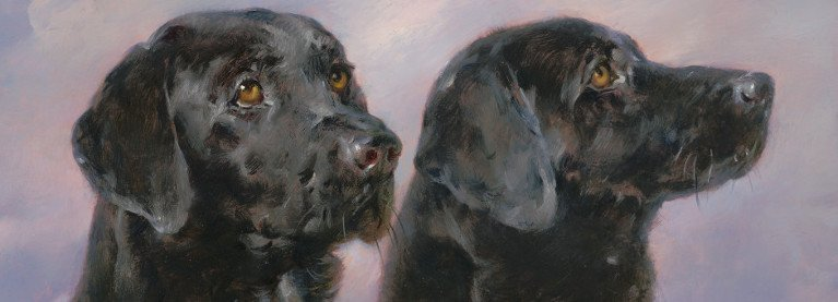 Black Labs cropped
